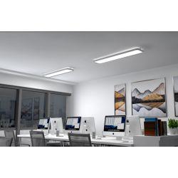 FALCO HE 100W projecteur industriel LED IP65 160 lm/W Haute efficacité lumineuse