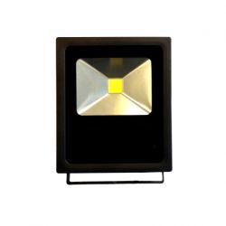 SCOTT 30W projecteur extérieur LED étanche