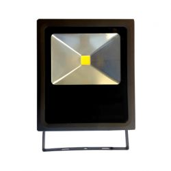 SCOTT 50W projecteur extérieur LED étanche