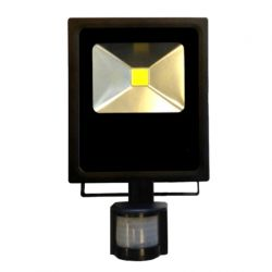 SCOTT D 30W projecteur extérieur LED étanche détecteur
